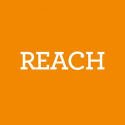 reach white_BG 60